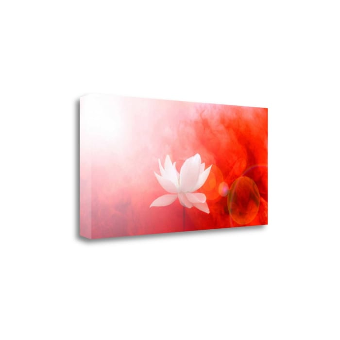 Lotus In Flames By Bahman Farzad Wrapped Canvas Wall Art