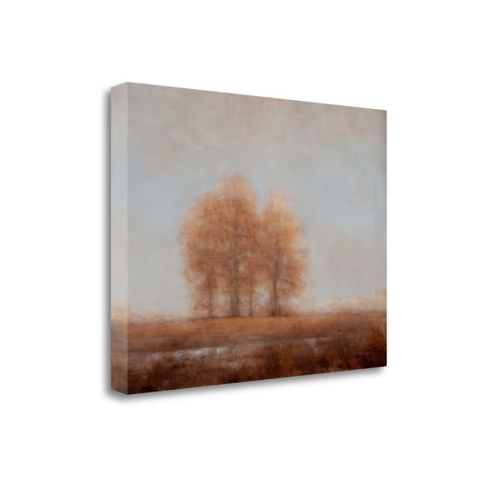 Summer Garden One By Karin Johannesson Wrapped Canvas Wall Art