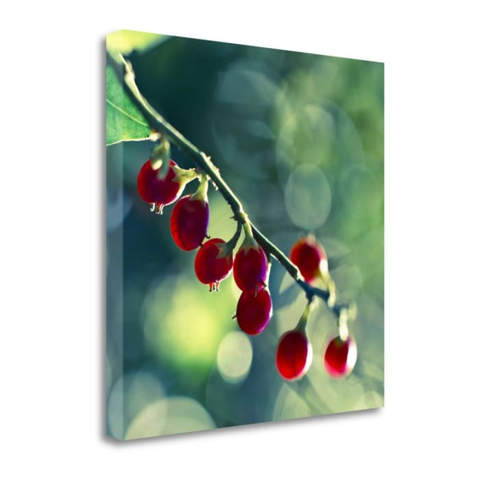 Luscious By Melanie Alexandra Price Wrapped Canvas Wall Art