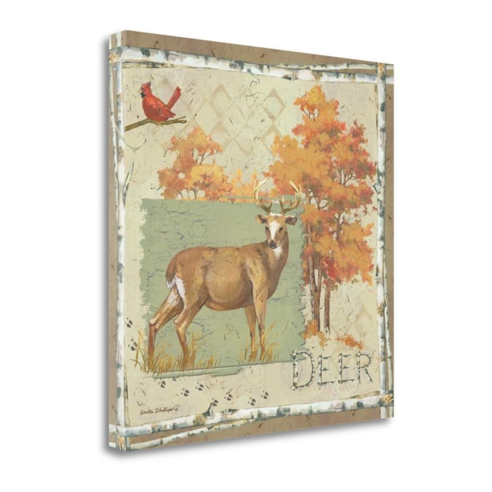 Deer By Anita Phillips Wrapped Canvas Wall Art