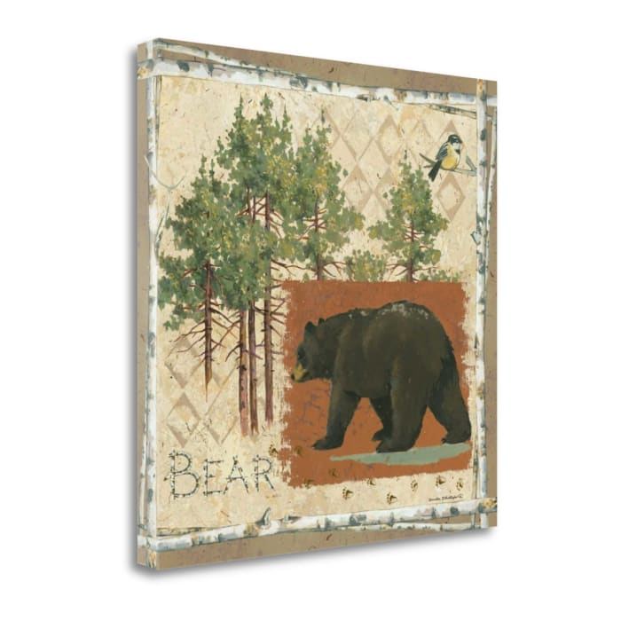 Black Bear By Anita Phillips Wrapped Canvas Wall Art