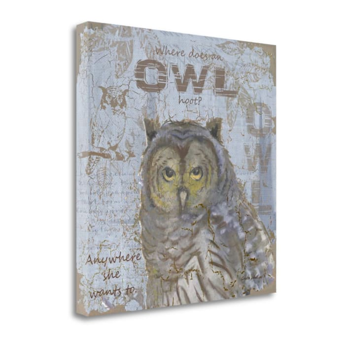 Where Does An Owl Hoot By Anita Phillips Wrapped Canvas Wall Art
