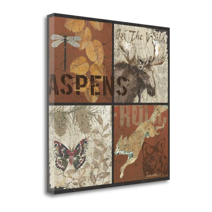 Aspens By Anita Phillips Wrapped Canvas Wall Art