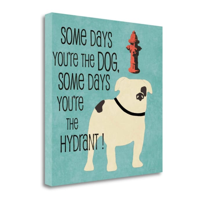 Hydrant By Jo Moulton Wrapped Canvas Wall Art