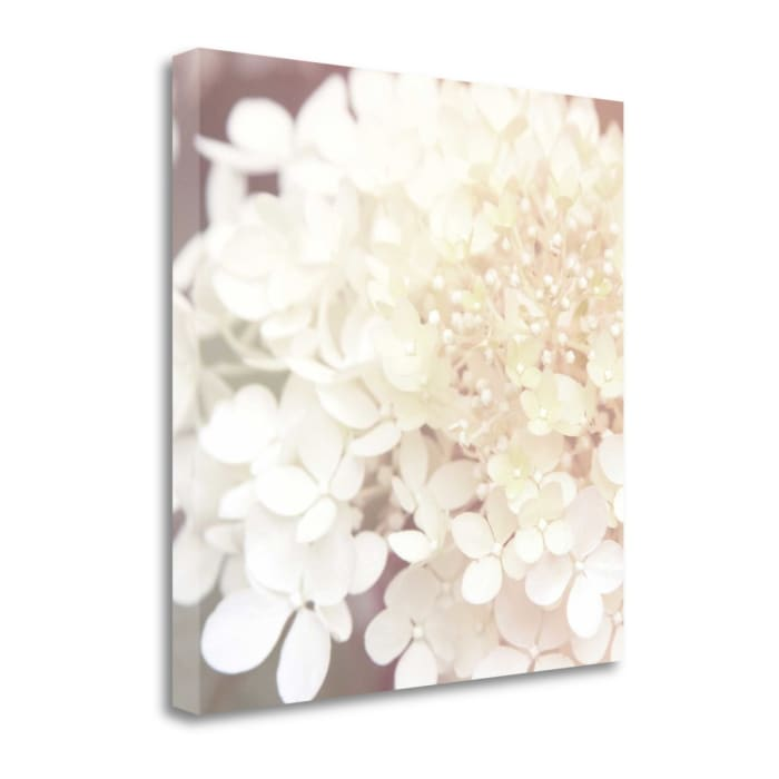 Hydrangea Dream II By Laura Marshall Wrapped Canvas Wall Art