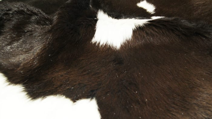 Calfskin Chocolate And White 2' x 3' Area Rug