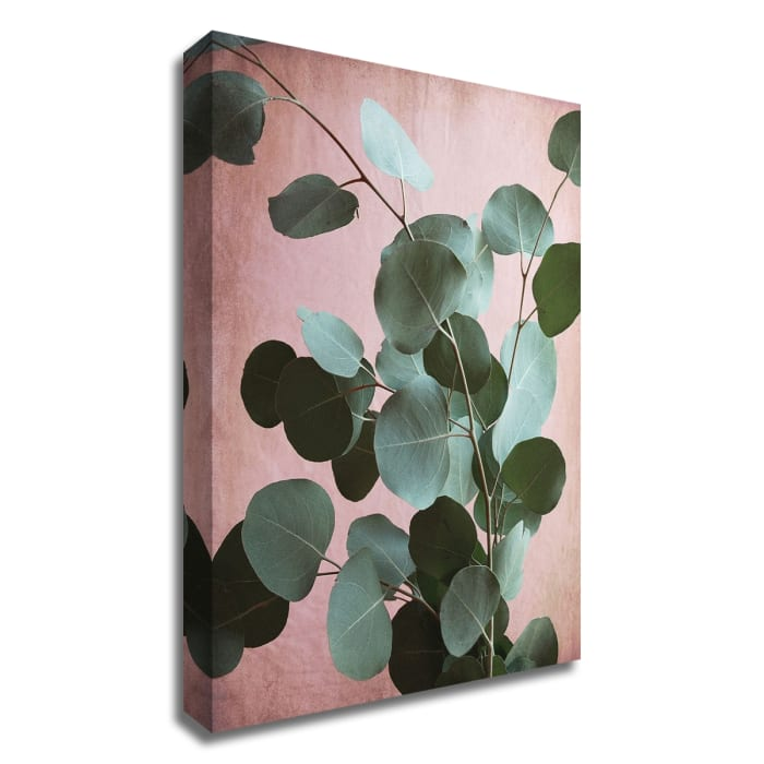 Sage Eucalyptus No. 1 by Lupen Grainne Wrapped Canvas Wall Art