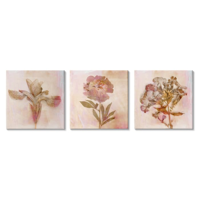 Vintage Dried Pink Flowers Flattened Florals Set of 3 Canvas Wall Art