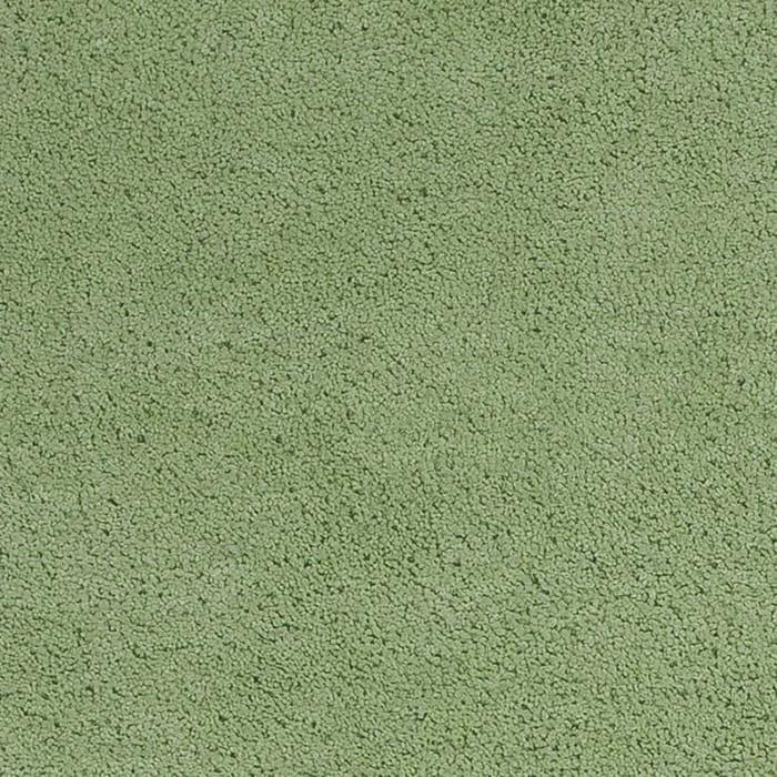 Shag Bright Green Area Rug