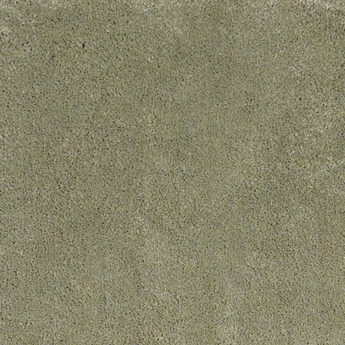 Sage Solid Color Green Area Rug