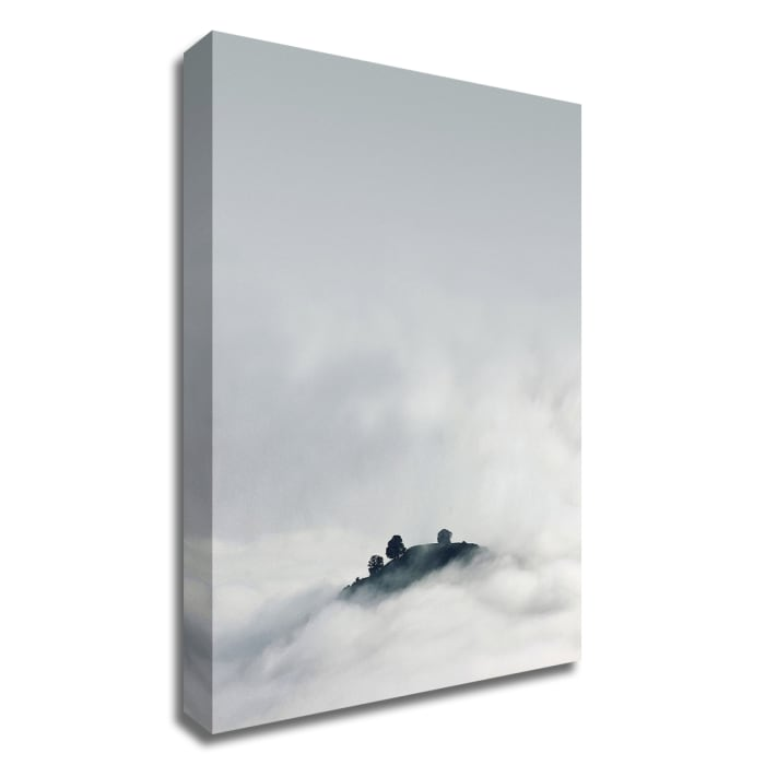 Lost in Mist by Design Fabrikken Wrapped Canvas Wall Art