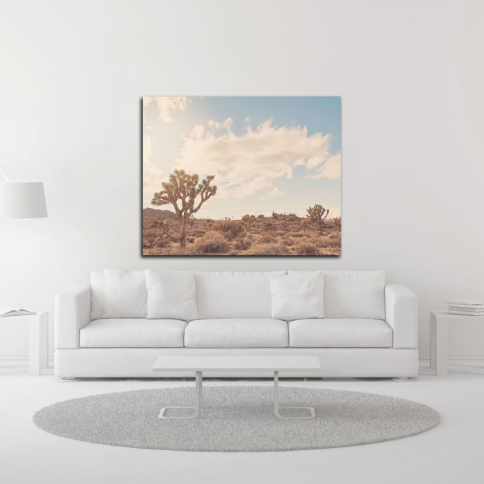 Sunshine and Joshua Trees by Myan Soffia  Wrapped Canvas Wall Art