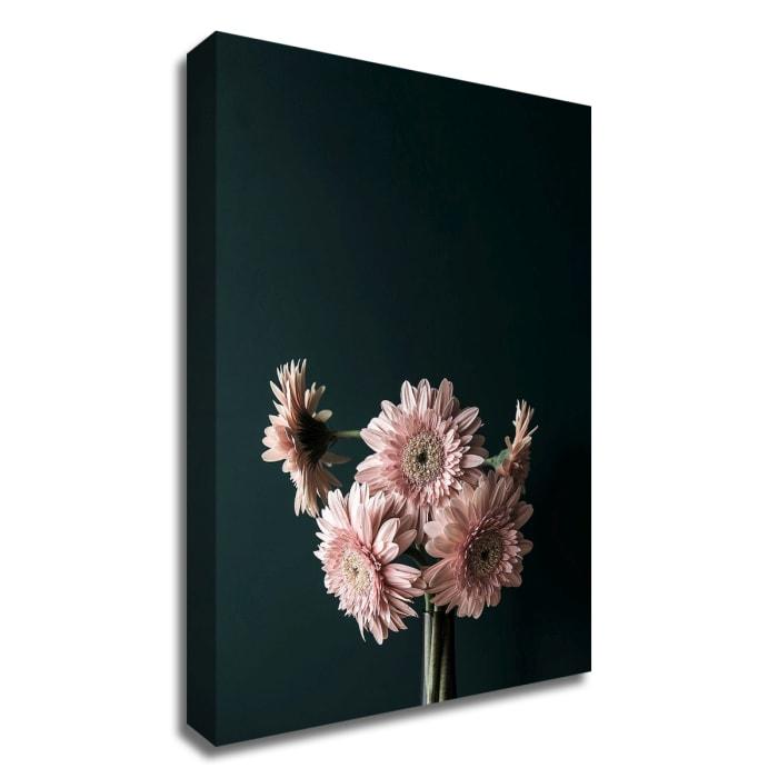 Pink Black by Design Fabrikken Canvas Wall Art