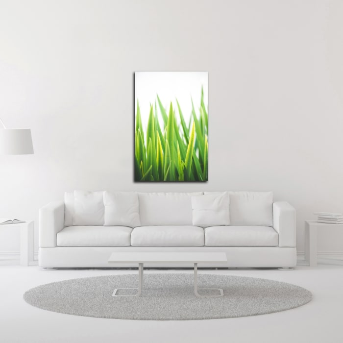 Blades of Green No. 2 by Sonja Quintero Wrapped Canvas Wall Art