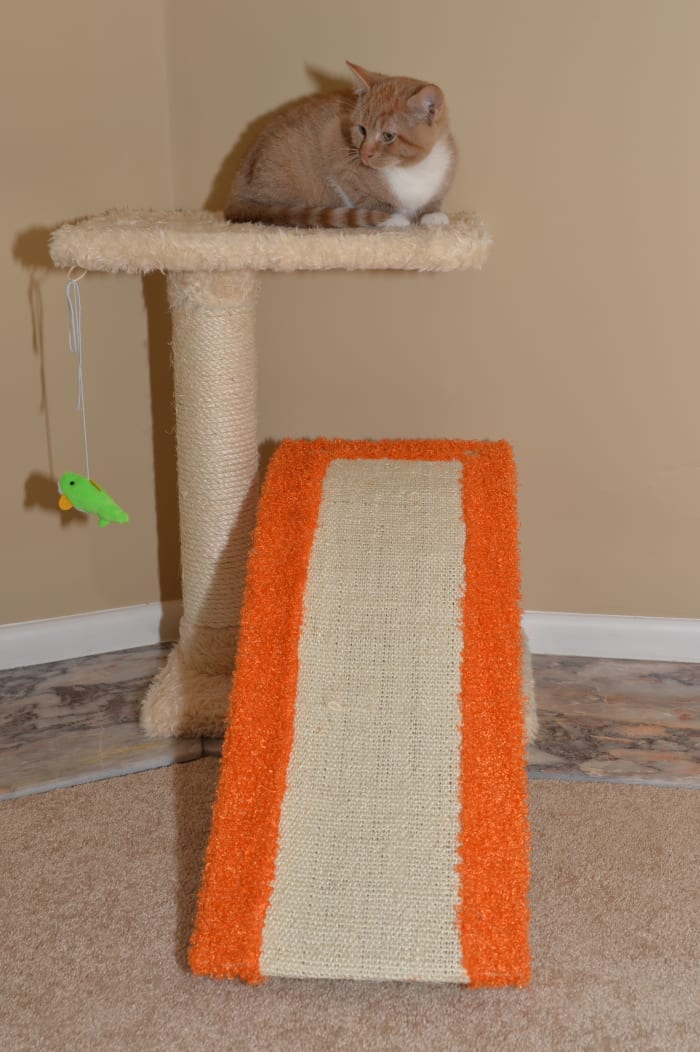 Two-Level Platform Scratcher With Sisal Carpet Ramp