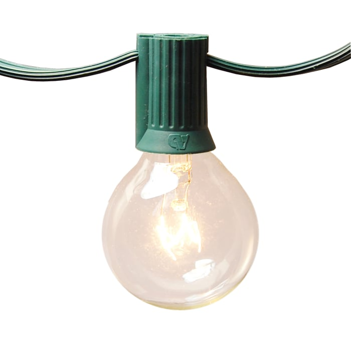 25 Clear Globe Bulbs Electric String Lights