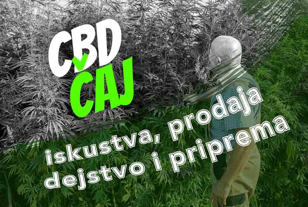 CBD čaj - iskustva, prodaja, dejstvo i priprema
