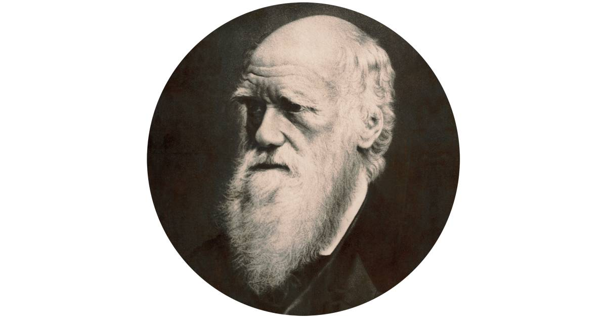 Who Is Charles Darwin   Charles Darwin For Kids   DK Find Out