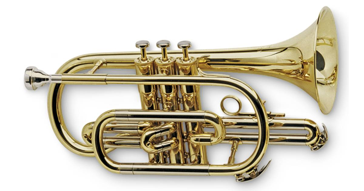 what is a cornet cornet facts for kids dk find out
