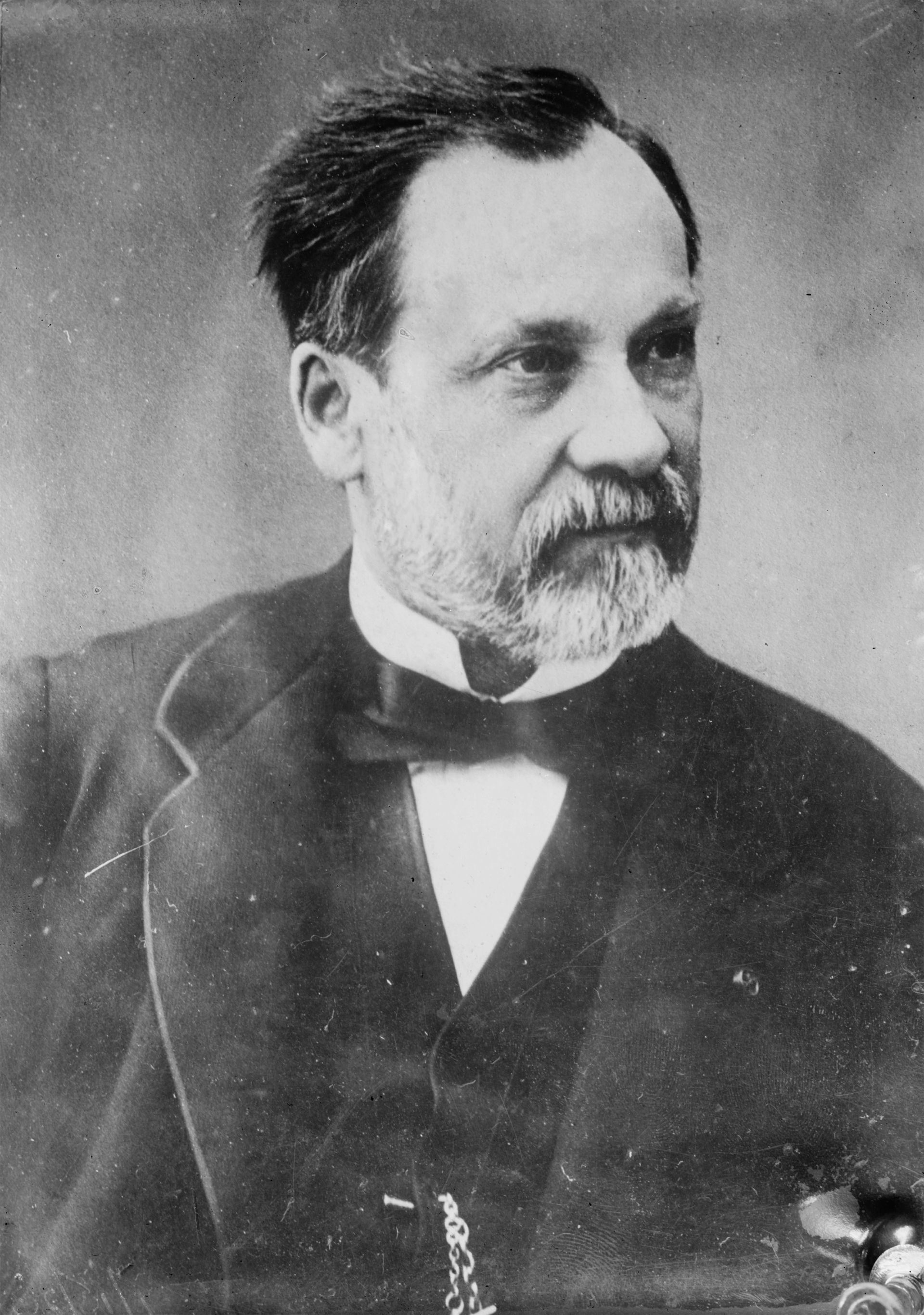 Extrêmement Louis Pasteur Facts | Louis Pasteur For Kids | DK Find Out QQ78