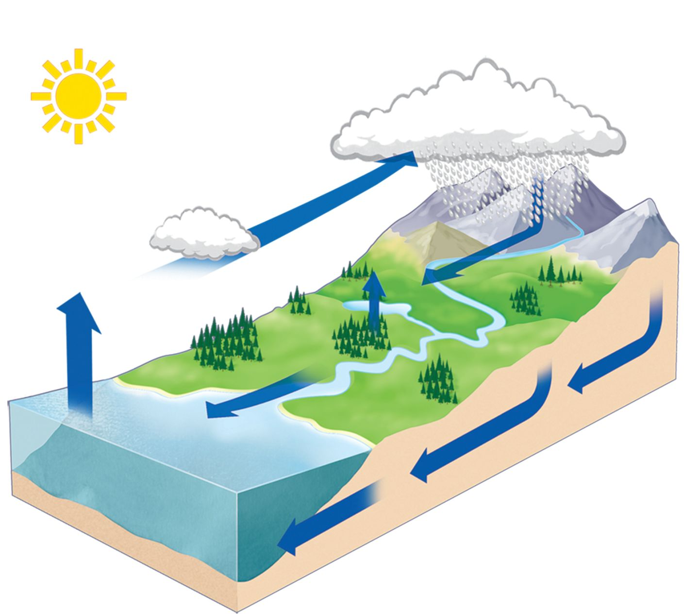 Water Cycle Mockup Ap5kal