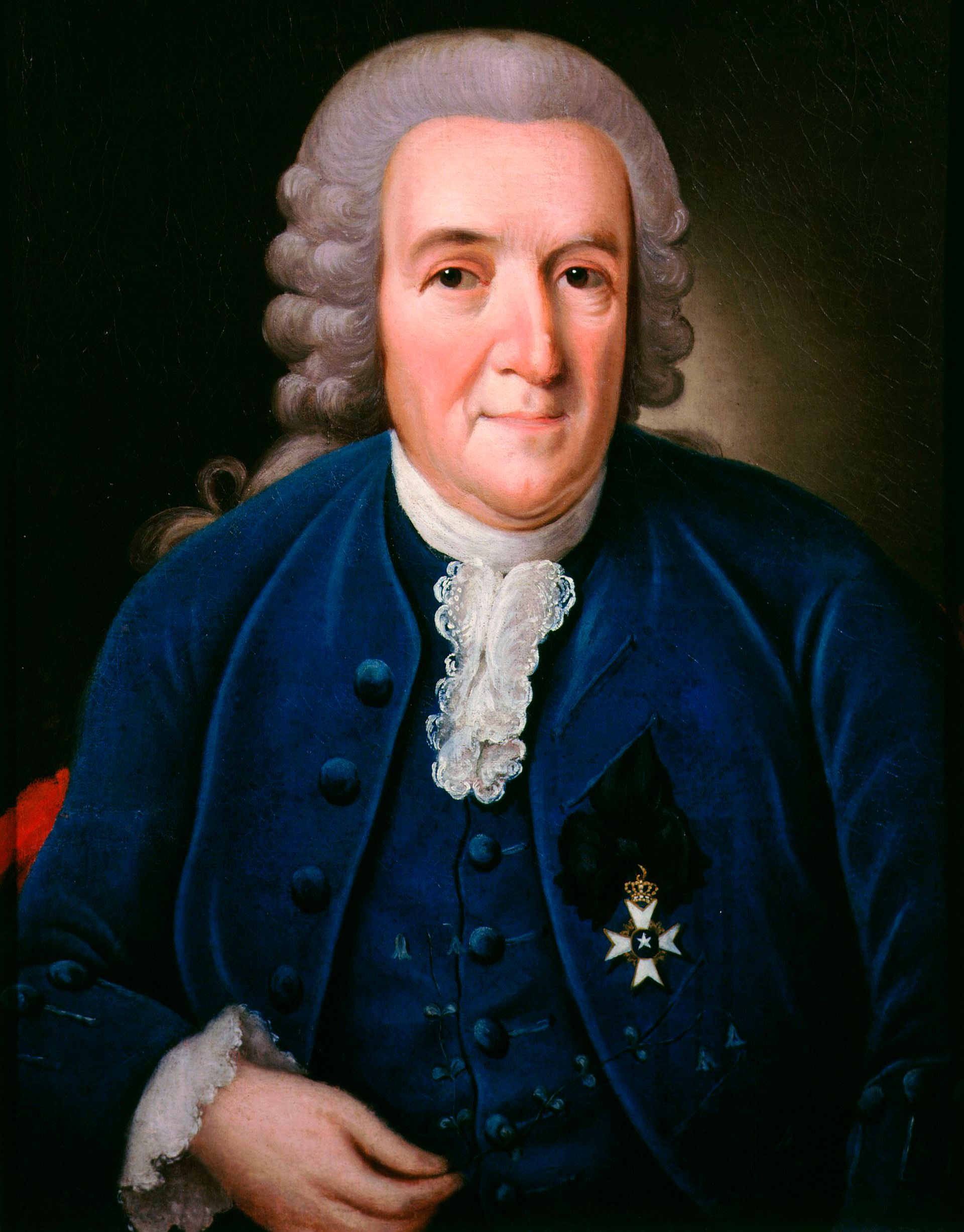carl linnaeus Linnaeus, carolus (1707 - 1778) carolus linnaeus (or carl von linné) was born on may 23 1707, and died on january 10 1778 he was a swedish scientist who laid the foundations for the modern scheme of.