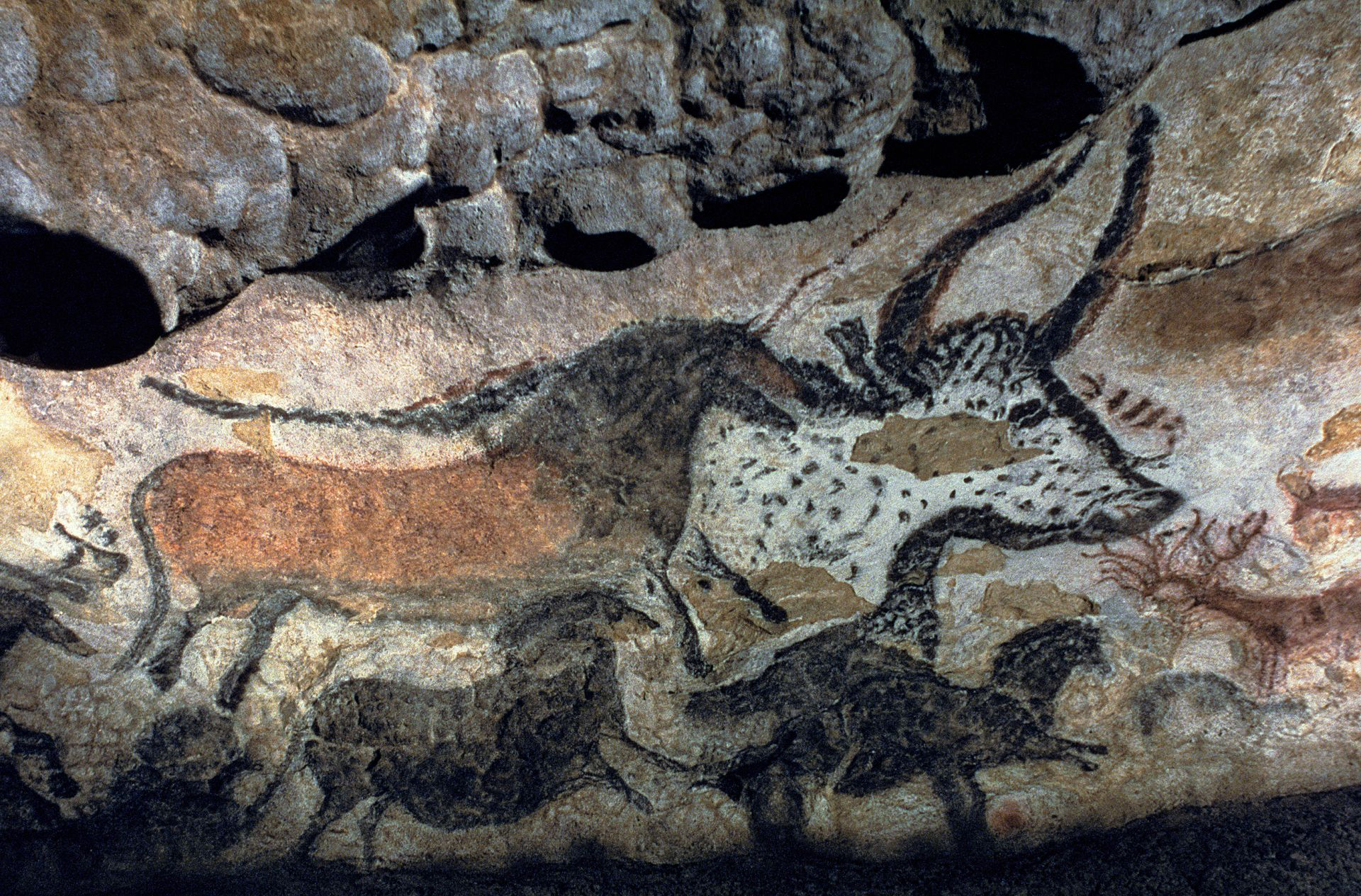 The Cave Art Paintings Of Lascaux