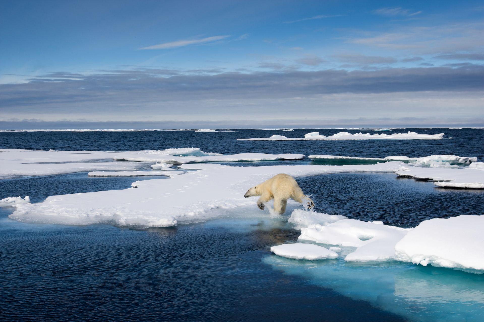 The Arctic Ocean Smallest Ocean In The World DK Find Out - Smallest ocean in the world