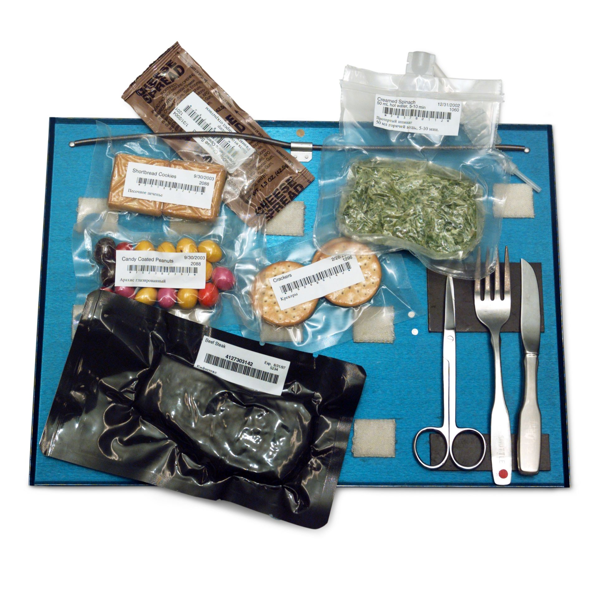 Fresh Meals Delivered >> Food In Space | Astronaut Food | DK Find Out