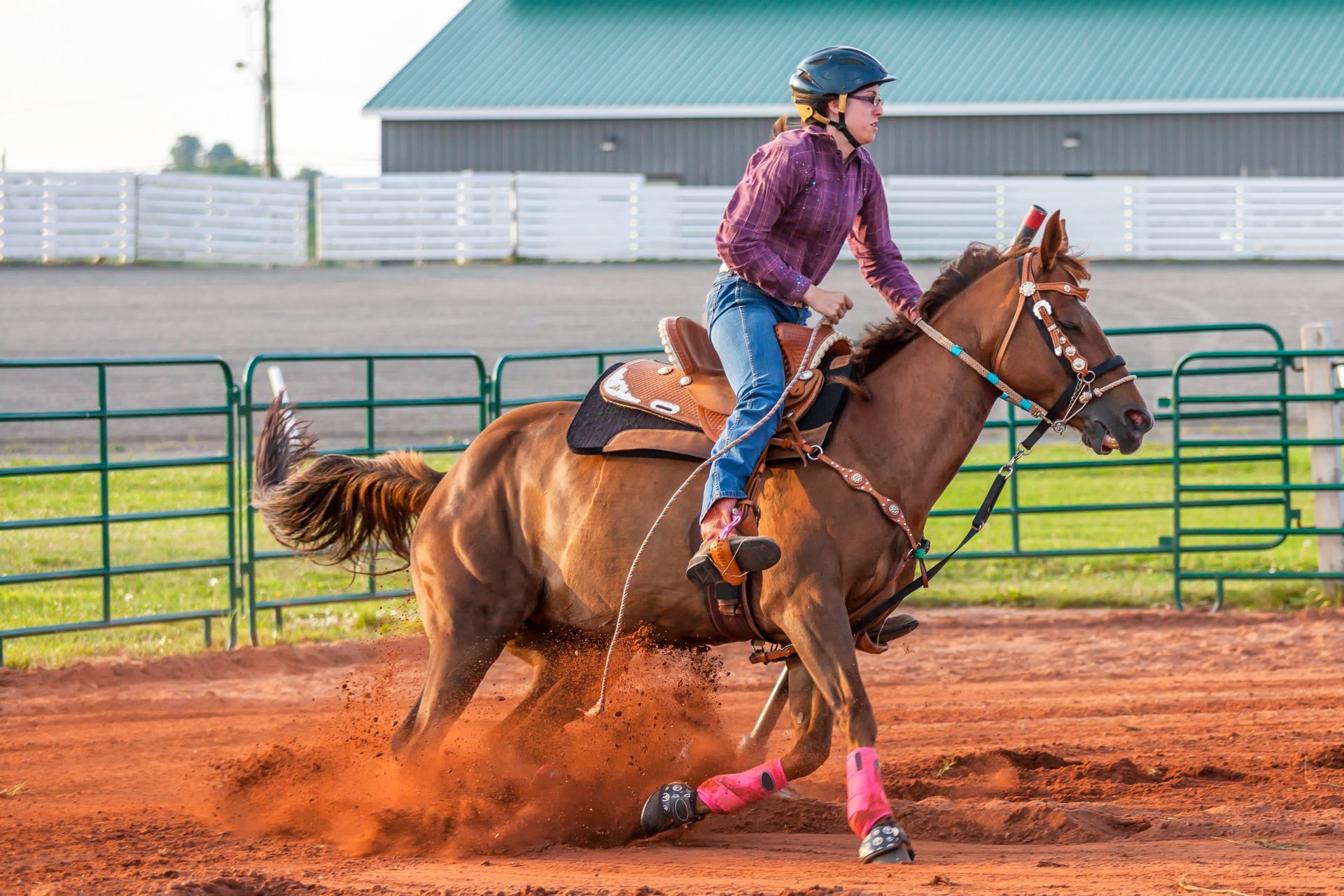 Facts About Western Horse Back Riding Dk Find Out