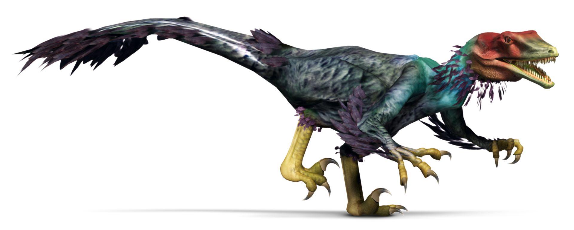 utahraptor facts utahraptor claw dk find out