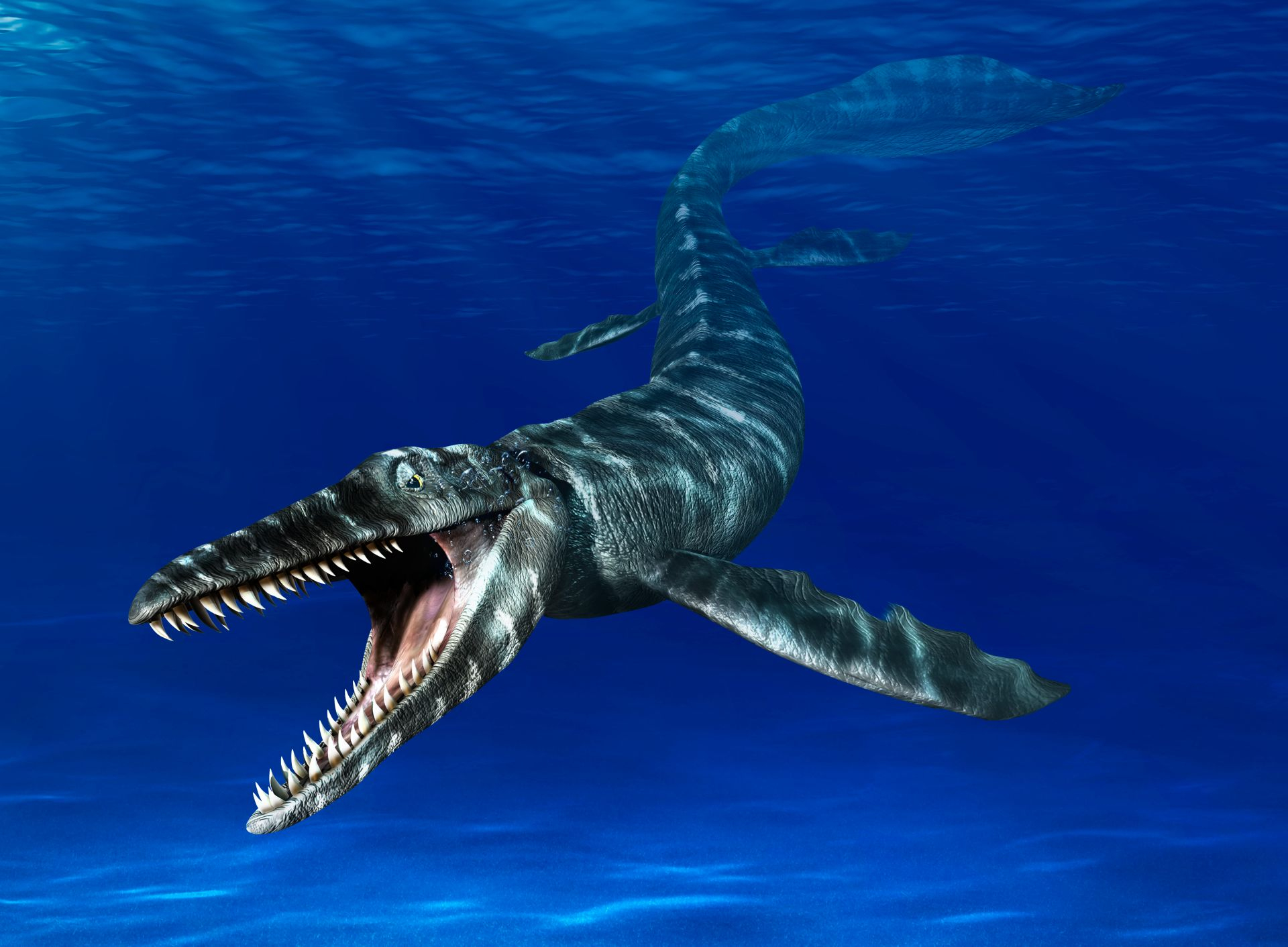 Mosasaurus | Mosasaurus Facts | DK Find Out