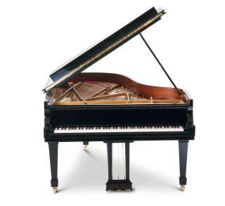 instrument families musical instrument types dk find out. Black Bedroom Furniture Sets. Home Design Ideas