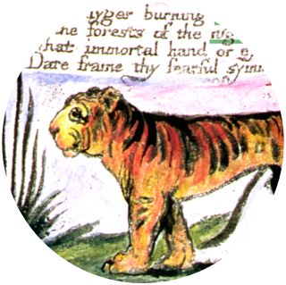 Poetry Facts For Kids   Types Of Poetry   DK Find Out