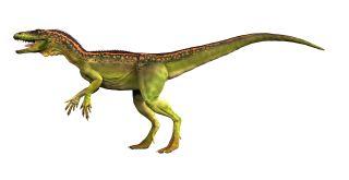 Dinosaur Train Apatosaurus Dinosaur Facts | Types...
