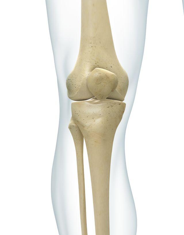 картинка колена человека сталкер стал одним