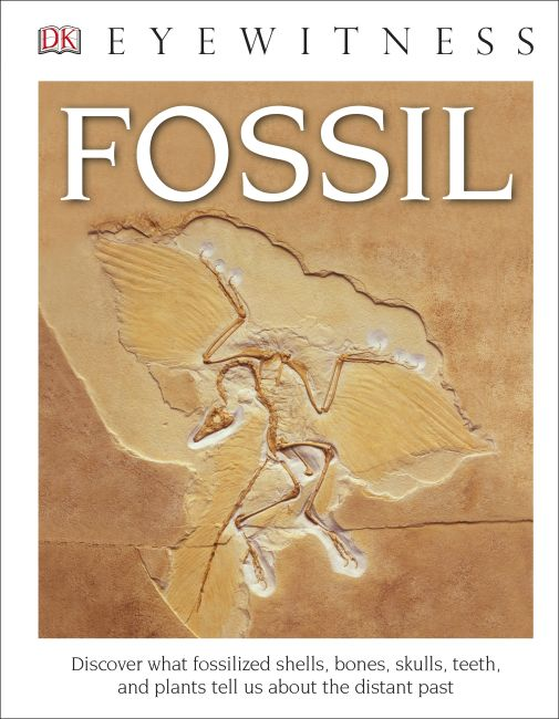 Hardback cover of DK Eyewitness Books: Fossil