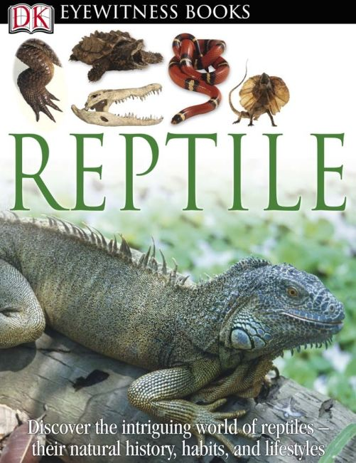 eBook cover of DK Eyewitness Books: Reptile