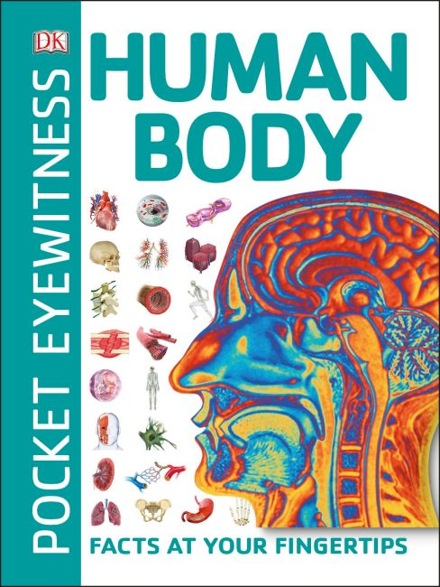 Paperback cover of Pocket Eyewitness Human Body