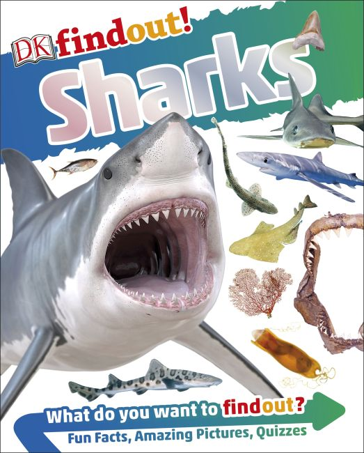 Paperback cover of DKfindout! Sharks