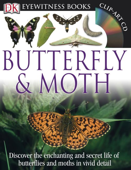 Hardback cover of DK Eyewitness Books: Butterfly and Moth