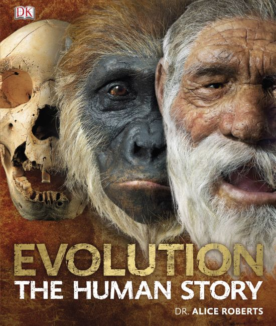 Hardback cover of Evolution The Human Story