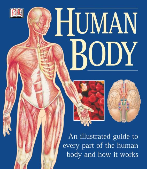 Paperback cover of The Human Body