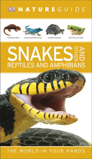 Flexibound cover of Nature Guide Snakes and Other Reptiles and Amphibians