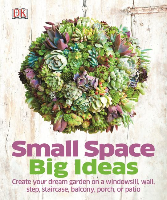 Hardback cover of Small Space Big Ideas