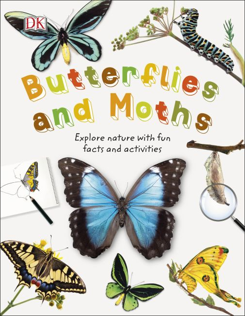 Hardback cover of Butterflies and Moths