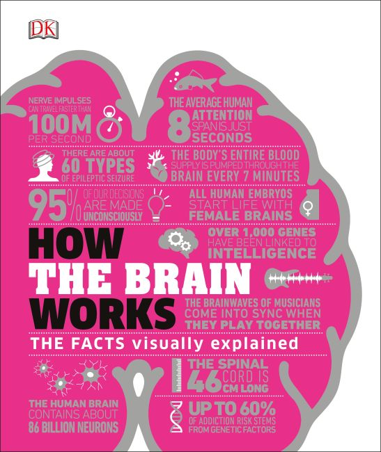 Hardback cover of How the Brain Works