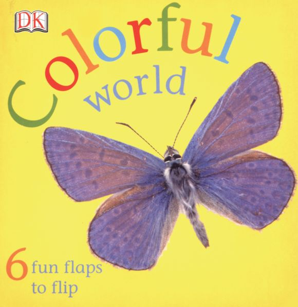 Board book cover of FUN FLAPS: Colorful World
