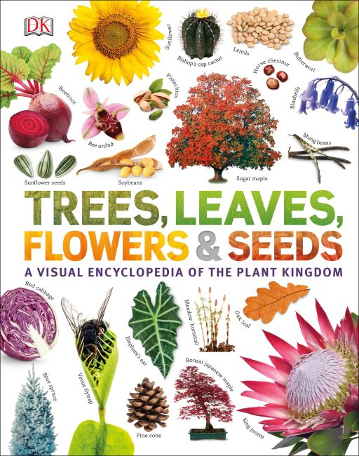 Hardback cover of Trees, Leaves, Flowers and Seeds