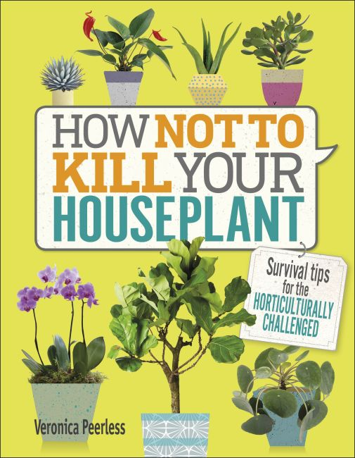 Hardback cover of How Not to Kill Your Houseplant